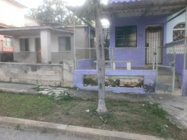 Biplanta in Roble, Guanabacoa, La Habana