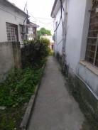 Biplanta en Pomo de Oro, Guanabacoa, La Habana 9