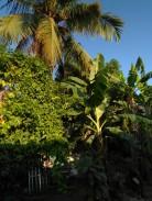 Casa en Diezmero, San Miguel del Padrón, La Habana 8