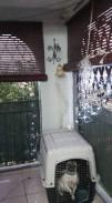 Apartamento en Playa Baracoa, Bauta, Artemisa 18