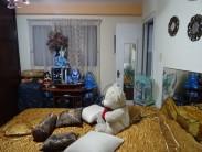 Apartamento en La Ceiba, Playa, La Habana 4